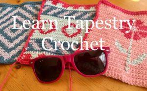Sweet Potato 3 Tapestry Crochet